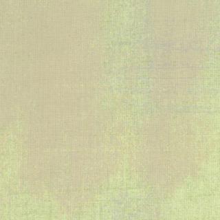 Moda Grunge Basics Poplin 30150 20