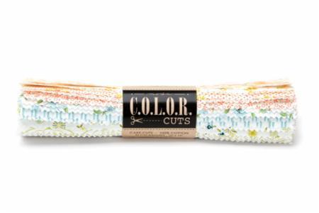 April/18 - Color Cuts Sugar On Top Layer Cake